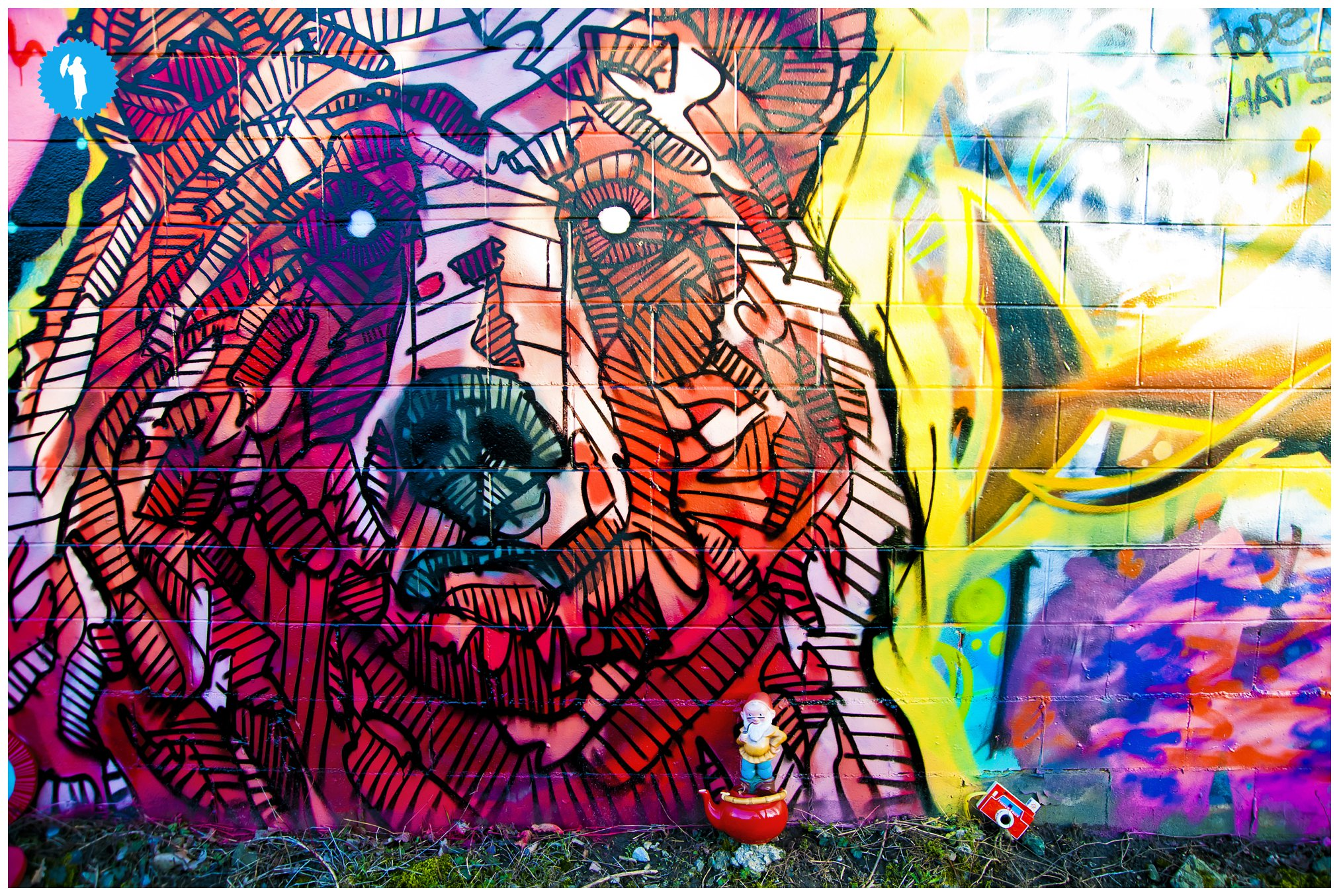 Graffiti by Chris Austin, photography by Emily Beatty, 2013.