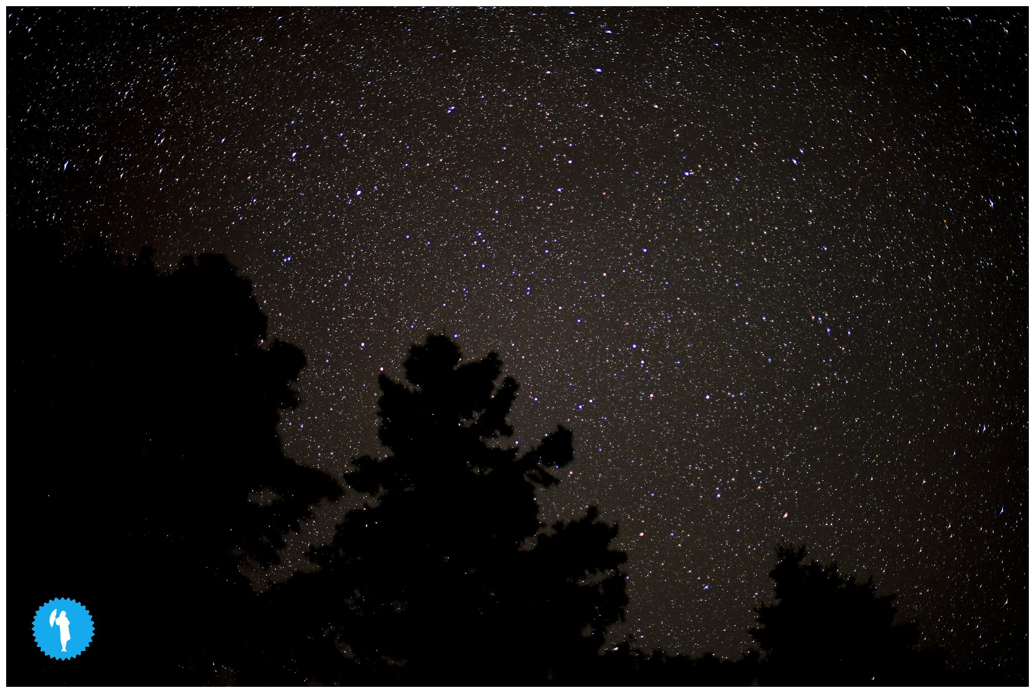 The stars, August in Oliphant, Ontario, photography by Emily Beatty.
