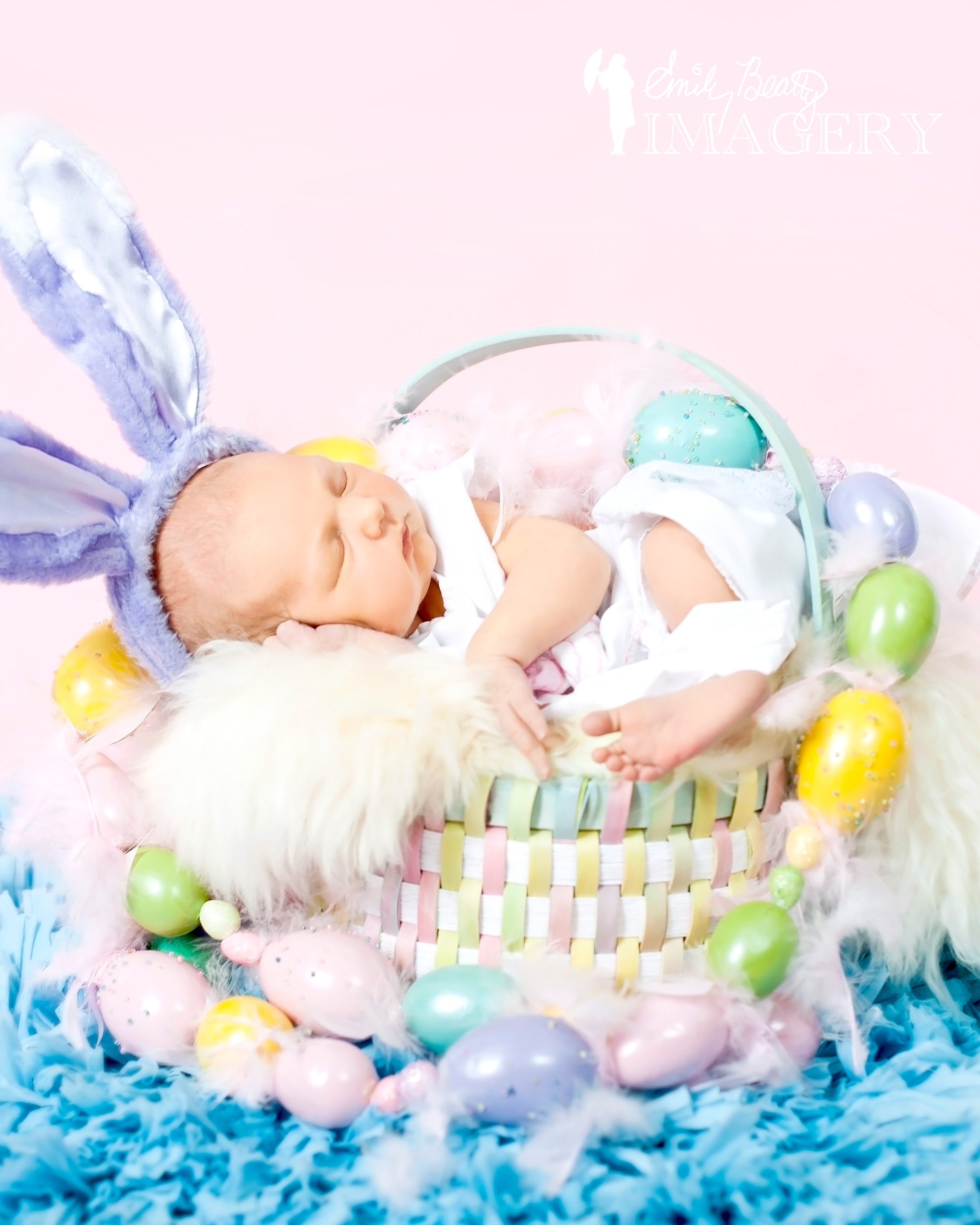 Emily_Beatty_spring_baby_animals